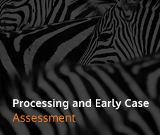 ProcessingandEarlyCase_Feature_Image