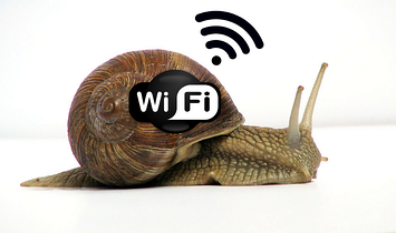 Slow WiFi snail